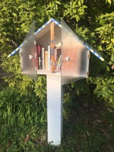 Fairfax on Foot: Little Free Library Walk- Sat, Feb 18