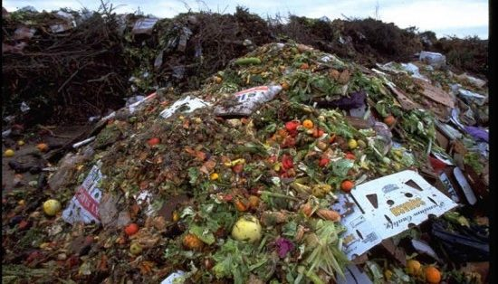Image of food waste